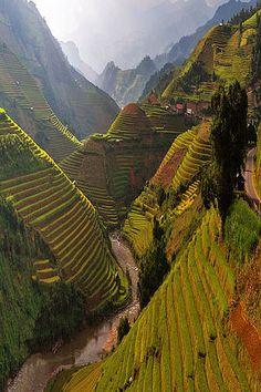 Mù Cang Chải District, Vietnam