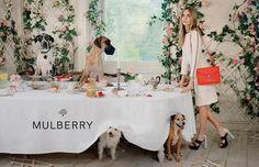 「マルベリー」の2014年春夏広告は、カーラと動物たちのティーパーティ   BRAND TOPICS   FASHION   WWD JAPAN.COM