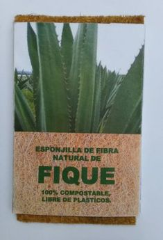 A fabric and leather alternative made of the Fique plant - MaterialDistrict Cactus Plants, Hunting, Alternative, Fabric, Leather, Tejido, Tela, Cacti, Cactus