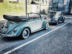 Vw T4, Beetle Convertible, Cute Cars, Vw Beetles, Norway, Dream Cars, Antique Cars, Vw Bugs, Vroom Vroom