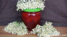Die aromatischen Blüten des Holunders lassen sich vielfältig in der Küche einsetzen, zum Beispiel zur Zubereitung von köstlichen Brotaufstrichen!