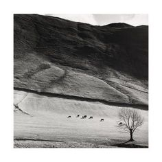 size: Giclee Print: Boardale, Cumbria 1982 Art Print by Fay Godwin : Rustic Photography, Fine Art Photography, Landscape Photography, Black And White Landscape, Beach Landscape, Cumbria, Black And White Photography, Find Art, Giclee Print