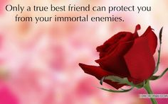 Beautiful Quote Wallpaper Love Friendship 85 For Your quote live wallpaper with Quote Wallpaper Love Friendship Beauty Tips For Teens, Makeup For Teens, Friendship Wallpaper, Love Quotes Wallpaper, Friendship Day Quotes, Senior Home Care, Healthy Cat Treats, 2017 Images