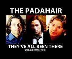 The Padahair