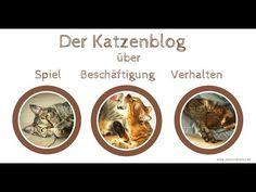 Katzenblog Coco und Nanju - Das Video Videos, Movies, Movie Posters, Funny Photography, Films, Film Poster, Cinema, Movie, Film