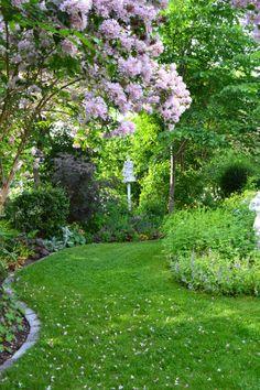 Rabattkant av tegel. Underlättar klippning av gräs samt hindrar att gräsmattan tränger in i rabatten.
