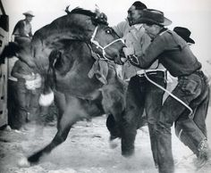 Wild horse race........back when they bucked and bit. Grab a holt!!!!!