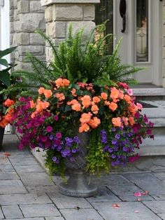 31 Pretty Front Door Flower Pots For A Good First Impression – Garden Furniture – Garden Projects Container Herb Garden, Container Flowers, Container Plants, Outdoor Planters, Garden Planters, Indoor Flowering Plants, Garden Catalogs, Smelling Flowers, Pot Plante
