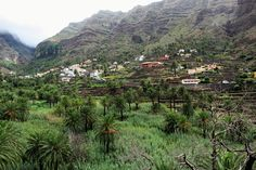 Valle Gran Rey - La Gomera Rey, Vineyard, Outdoor, La Gomera, Islands, Outdoors, Vine Yard, Vineyard Vines, Outdoor Games