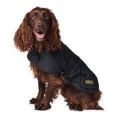 Buy Barbour International Dog Coat, Black Online at johnlewis.com