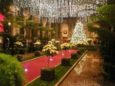 christmas gardens - Google Search