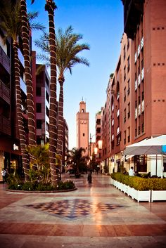 Morocco, palm trees, mosque, mall, green, lights, warm, spring, city, city life, vacation, holiday, Marrakech, architecture, floor, culture, art, amraniphoto.com