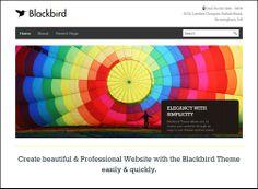 20 Great Free Ecommerce WordPress Themes | designrouge.com