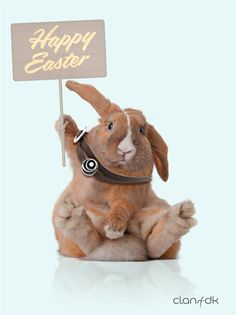 Greetings from our dear friend Rita The Rabbit. Happy Easter! #clanofdk #Sterlingsilver #Scandinavia #Denmark #easterbunny #Rabbit :-)