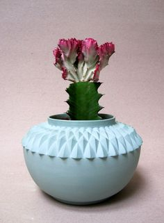 "cactus  - vase ""queen mother""  - by #lennekewispelwey - www.lennekewispelwey.nl"