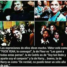Estilo Harry Potter, Harry Potter Hermione Granger, Harry Potter Tumblr, Harry Potter Anime, Harry Potter Facts, Harry Potter Fan Art, Harry Potter World, Albus Severus Potter, Desenhos Harry Potter