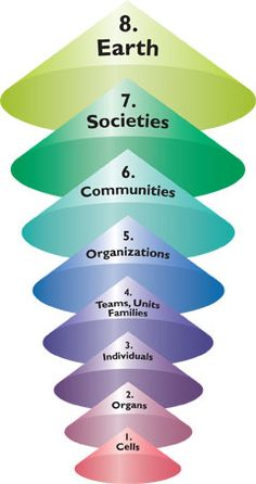 8 Levels of (Human/Social) Systems something to think about ... Systems Thinking
