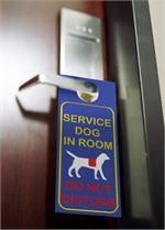 service dog identification products