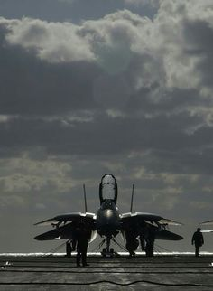 Us Military Aircraft, Military Jets, Air Fighter, Fighter Jets, Pictures To Draw, Cool Pictures, F14 Tomcat, Military Special Forces, United States Navy
