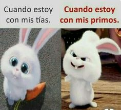 Jajaja XDXD Really Funny Memes, Stupid Funny Memes, Funny Relatable Memes, Hilarious, Funny Spanish Memes, Spanish Humor, Mexican Memes, New Memes, Funny Photos