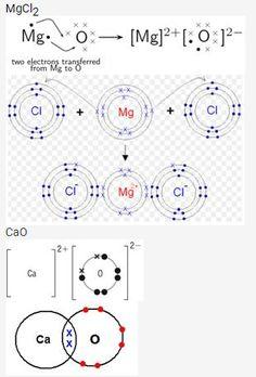 www aplustopper com maths class 9