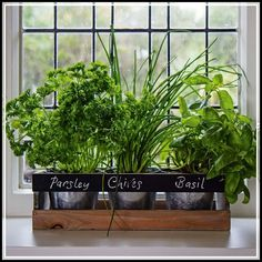 Indoor Herb Garden Kit - by Viridescent - Wooden Windowsill Planter Box for the Kitchen. Includes All You Need to Grow Your Own Herbs. Personalise with Chalk Provided. Herb Garden Kit, Herb Garden Planter, Herb Garden In Kitchen, Herb Garden Design, Kitchen Herbs, Herb Planters, Easy Garden, Herb Garden Indoor, Garden Ideas