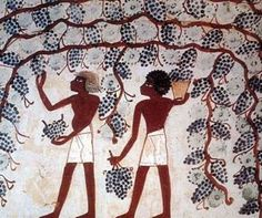 Ancient Egyptian kings avoided wine because of its resemblance to blood. They believed that it was the blood of those who battled the gods and for that same reason, is why drinking wine temporarily made them a little crazy! Egyptian Kings, Wine Craft, Wine Collection, Wine Drinks, Wines, Disney Characters, Fictional Characters, Disney Princess, Crafts