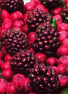 Raspberry  #Luxurydotcom