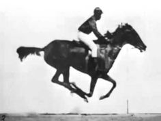 The horse in motion (Eadweard Muybridge) 1878 First Film Ever - YouTube