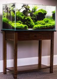 Incredible planted tank!