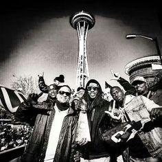 LOB - Seattle Seahawks! Seahawks Football, Seattle Seahawks, Cat Drooling, Blue Friday, 12th Man, Emerald City, Champs, Vikings