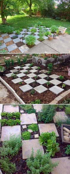 The Checkerboard is Great Layout for Herb Garden. Even If It Rains You Can Easily Get to Your Food