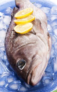 Raw. Food Styling. Fish on Ice.