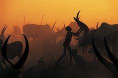 Dinka: Photo Series by Carol Beckwith & Angela Fisher