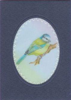 scan3_01_01.jpg (440×618)