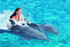 Nado con Delfines en #Cancun y la Riviera Maya