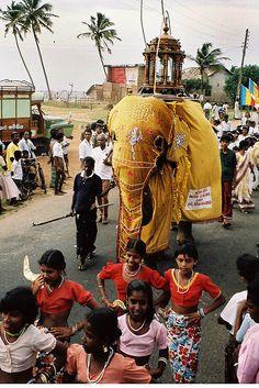 A colorful Procession during a Buddhist festival in South Sri Lanka. Sri Lanka Vacation, Maldives Destinations, Sri Lanka Holidays, India Travel, People Around The World, Southeast Asia, Trip Planning, Thailand, History