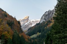 Alpstein Herbst › Timo Kellenberger #alpstein #switzerland #mountains