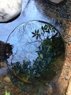 Kiyomasa no ido in Meiji jingu shrine  mirror of clear water