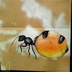 #unabellagiornata 277/365  #inktober2017 giorno 5 Myrmecocystus - Ruoli sociali nel microcosmo: la formica nutrice, come un'otre vivente, custodisce nel suo ventre il cibo per la colonia. #inktober  #inktoberaduntratto #passoasei #insetti  #sketchbook #shadow
