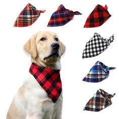 Plaid is the hot fashion trend and now your dog can be a trendsetter with these colorful bandanas. Triangular in shape,these Barkpalz plaid dog bandanas 'easily make a fashion statement at the dog park and on neighborhood walks. With 6 color combi. Pet Dogs, Dog Cat, Pets, Every Dog Breed, Cotton Pictures, Cat Bandana, Bow Tie Collar, Cat Accessories, Tonne