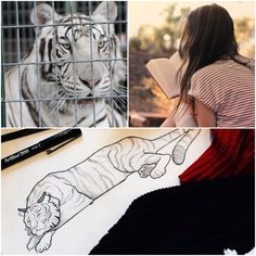 My favorite book is Tiger's Curse and the scene I have chosen is when Ren and Kelsey first meet.  It's the scene where Kelsey is working at the circus and sees this beautiful white tiger (Ren) in a cage and she talks to him, reads to him, and draws him in her journal. Some people might not find that romantic but it's the beginning of falling in love with someone. Even though Ren is a Tiger there is a spark there.  (For contest to win Reawakened) @colleenrayhouck