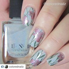 #Repost @colorednailz with @repostapp  'Green' for #clairestelle8april (maybe not the greenest but still ) I love how this promise summer. Can't wait.  @ilnpbrand 'paper route' #stampingnails #stampingnailart #ilnppaperroute #holo #holonailpolish #nails #nailart #nailartaddict #summermani #instanails #nailsofinstagram #notd #norskenegler #norwegiannails #alltheprettynails #showmynails #nails2inspire #dinnegl by nails_addicts_group