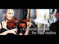 3Dvarius - High-end 3D printed electric Violin by 3Dvarius — Kickstarter