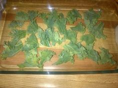 How to make kale chips. Sounds ridiculously easy.