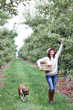 Nothing beats freshly picked apples right off the tree. Whether or not you grew up near an orchard or even just a tree . I hope you all have a chance to experience picking your… Autumn Fashion Casual, Casual Fall, Apple Picking Outfit, Jillian Harris, Apple Orchard, Happy Fall Y'all, Fall Sweaters, Wedding Engagement, Engagement Photos
