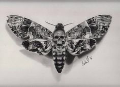 """12.6k Likes, 39 Comments - World of Pencils (@worldofpencils) on Instagram: """"Death Moth! Charcoal drawing by artist @leila_blackcatink #pencilart #pencildrawing #charcoal…"""""""