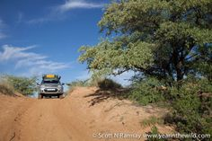 Scott Ramsay goes back towards simplicity with an adventure through the Kgalagadi Transfontier Park to Mabuasehube. I Am An African, Country Roads, Magazine, Spaces, Adventure, Park, Blog, Magazines, Parks