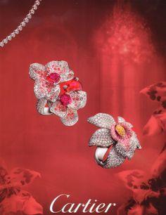 Caresse d'orchidées CARTIER