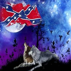 Southern Heritage, Southern Pride, Southern Women, Confederate States Of America, Confederate Flag, Country Girl Life, Country Girls, Camouflage Wallpaper, Skull Wallpaper